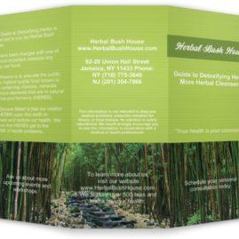 Tri-fold Brochures – Herbal